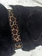 Pre zvieratá - Obojok Leopard - 9195751_