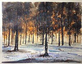 Obrazy - Zapad slnka v lese - 9198519_