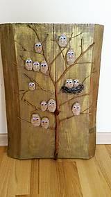 """Obrazy - Drevený obraz - """"Vtáčí strom"""" - 9202975_"""