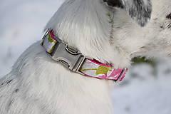 Pre zvieratká - FLOWER obojok - 9203552_