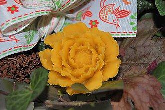 Dekorácie - Vosková kvetinka - 9210172_