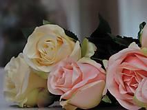 Iný materiál - Ruže marhuľové, krémové - 9211433_