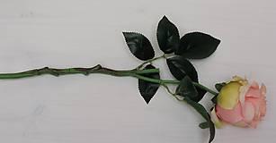 Iný materiál - Ruže marhuľové, krémové - 9211435_