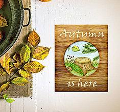 Obrazy - Prírodný obrázok a drevo - peň - 9226460_