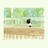 Obrazy - Straka na lavičce - originál, akvarel - 9235543_