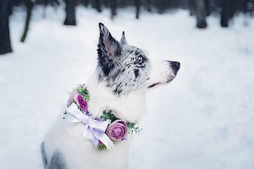 """Obojok pre psíka na stuhe """"kvetinové opojenie"""""""