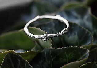 Prstene - Vetvičkový prsteň strieborný Ag925, obrúčka alebo len tak... - 9243764_