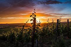 Západ slnka nad Tokajskými vinicami