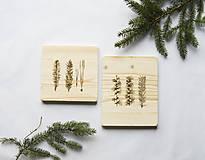 Obrázky - Variácie z lesa: obrazy - 9265818_