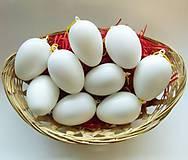 Polotovary - Plastové vajce/vajíčko, s uškom na zavesenie, 1 ks - 9274475_