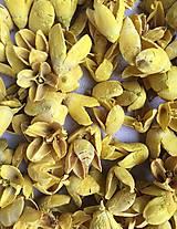 Bakuli pods - sýte žlté