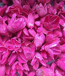 Suroviny - Bakuli pods - sýte ružové - 9274805_
