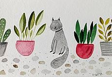 - Rastliny  a mačky  ilustrácia  pohľadnica / originál maľba  - 9280303_