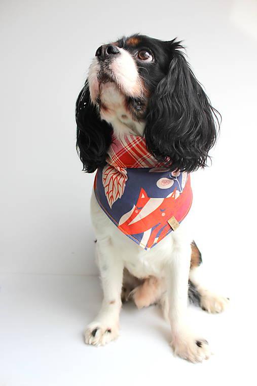 Foxy - Obojstranná šatka pre psíkov