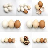 Návody a literatúra - NÁVOD: Ako zafarbiť vajíčka 100% prírodne - 9287237_