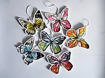 Jarná kolekcia Butterfly