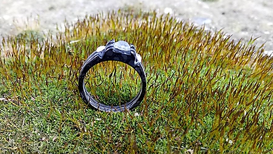 Prstene - Queen prsteň - 9291498_