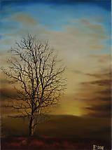 Obrazy - Obraz - Láska k prírode - 9296551_