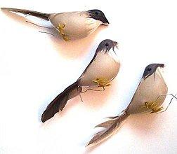 Dekorácie - Umelý vtáčik - 1 ks - 9296334_