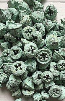 Suroviny - Eucaliptus - tyrkysový pastelový - 9298956_