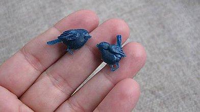 Náušnice - Modrí vtáčikovia - živicové napichovačky č. 1905 - 9318041_
