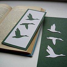 Papiernictvo - Divé husi zelené... - 9321555_