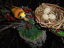 Dekorácie - Prírodná dekorácia s konármi a vtáčikom - 9319722_
