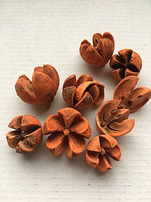 Suroviny - Divoký pomaranč-oranžový - 9324632_