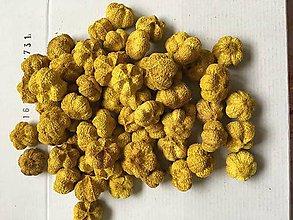 Suroviny - Paras pumpkin-žlté - 9324884_
