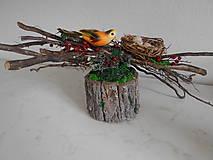 Prírodná dekorácia s konármi a vtáčikom