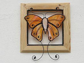 Obrazy - Motýľ Emanuel - obraz - 9335012_