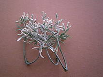 Iný materiál - Zeleň s bobuľkami - 1 dvojvetvička - 9337603_