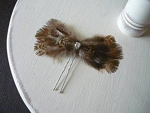 Ozdoby do vlasov - Fascinátor / vlásenka NATURE so štrasom - 9341912_