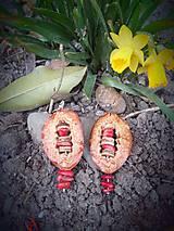 Náušnice - núšničky červený Koral - 9348961_