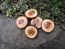 Galantéria - gombíky z konára jablone  2 - 9357078_