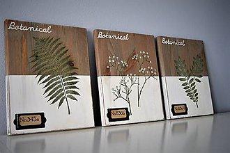 Tabuľky - Sada botanických obrázkov - 9356279_