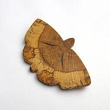 Odznaky/Brošne - Motýľ dubový - 9361097_