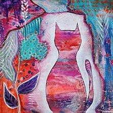 Obrazy - Mačka pestrofarebnica 40x40 cm - 9361109_