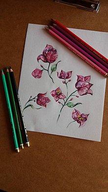 Kresby - Daily output botanical v bordovom - 9366630_