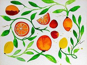 Obrazy - Grepy a citrony ilustrácia  / originál maľba - 9374722_