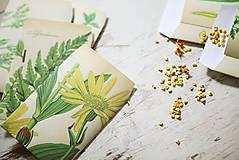 Papiernictvo - Papierové sáčky na semienka (do záhrady) - 9379785_