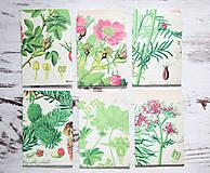 Papiernictvo - Papierové sáčky na semienka (do záhrady) - 9379862_