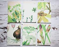 Papiernictvo - Papierové sáčky na semienka (do záhrady) - 9379865_