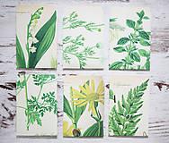 Papiernictvo - Papierové sáčky na semienka (do záhrady) - 9379866_