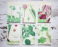 Papiernictvo - Papierové sáčky na semienka (do záhrady) - 9379867_