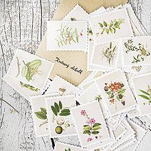 Papier - Kvetinové nálepky Známky z herbára - 9385254_
