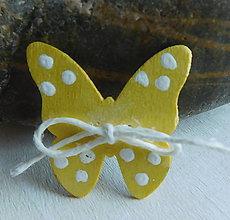 Odznaky/Brošne - brož motýlik - 9403988_
