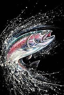Oblečenie - pre rybára - 9407300_