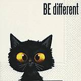 - mačka - 9408871_