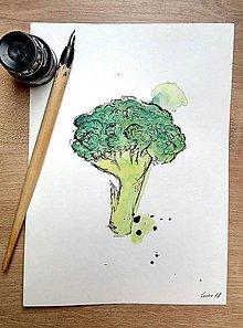Kresby - Brokolica - 9410693_